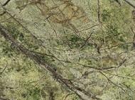 Виды камня (гранит и мрамор) - 1212