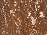 Виды камня (гранит и мрамор) - 1257