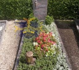 Озеленение могил - 1740