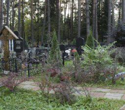 Разрешение на кладбищах - Staro-markovskoe-kladbishhe