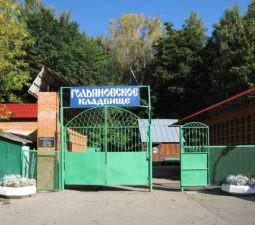 Разрешение на кладбищах - golyanovskoe_vhod
